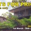 Eco Cottages and Bush Retreat