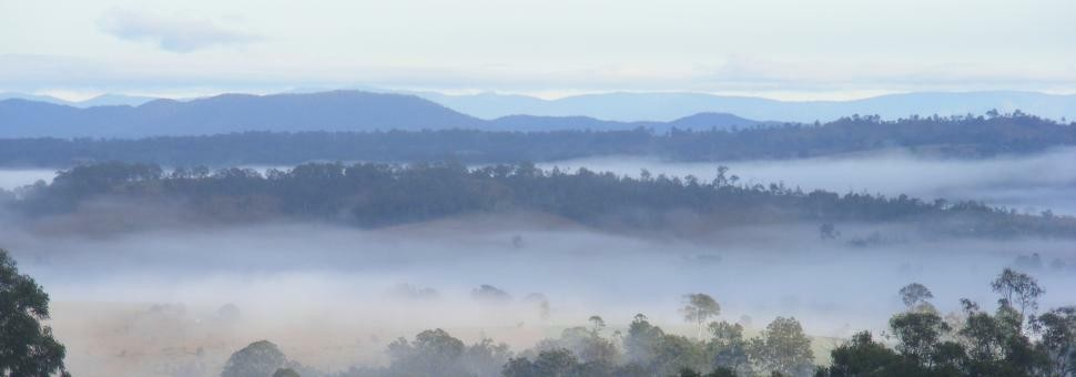 Misty Morning at Wallaby Ridge