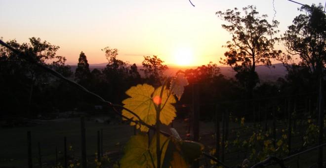 Gold Coast Scenic Rim Food and Wine Trail