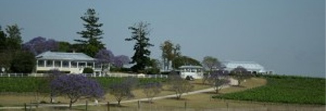 Accommodation near Albert River Wines? Wallaby Ridge Retreat is just up the road!